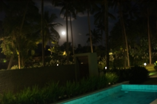 The moon was peeping behind the coconut trees seen from our mansion.